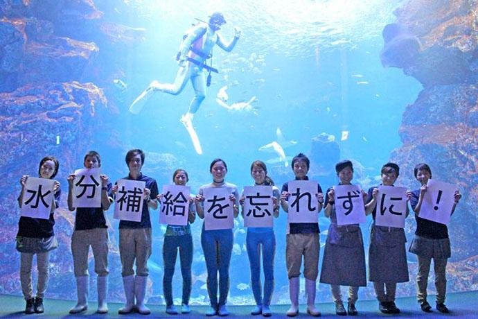 京都マラソン2015 京都水族館からの応援画像