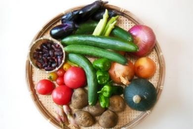 相模原の朝採り野菜(無農薬野菜)予約販売限定5箱です!!数に限りがございますので、お早目にご注文下さい。