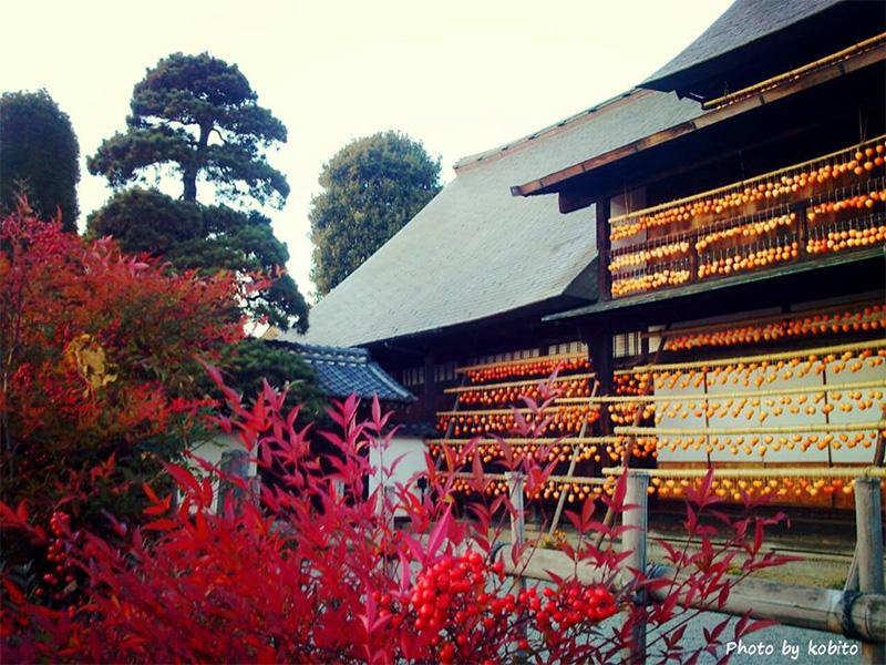 塩山駅北口前の甘草屋敷(重要文化財)にもオレンジのカーテン。 カメラを持った人たちがたくさん訪れます。