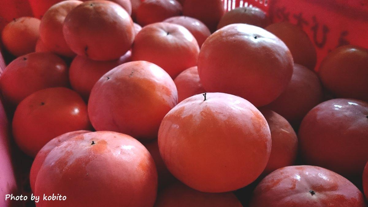 ほったらかしでも、毎年、実をつけてくれる庭の甘柿。 今年はあわただしく時が過ぎ、全てを収穫しきれず… 残った実は鳥さんたちに託して。